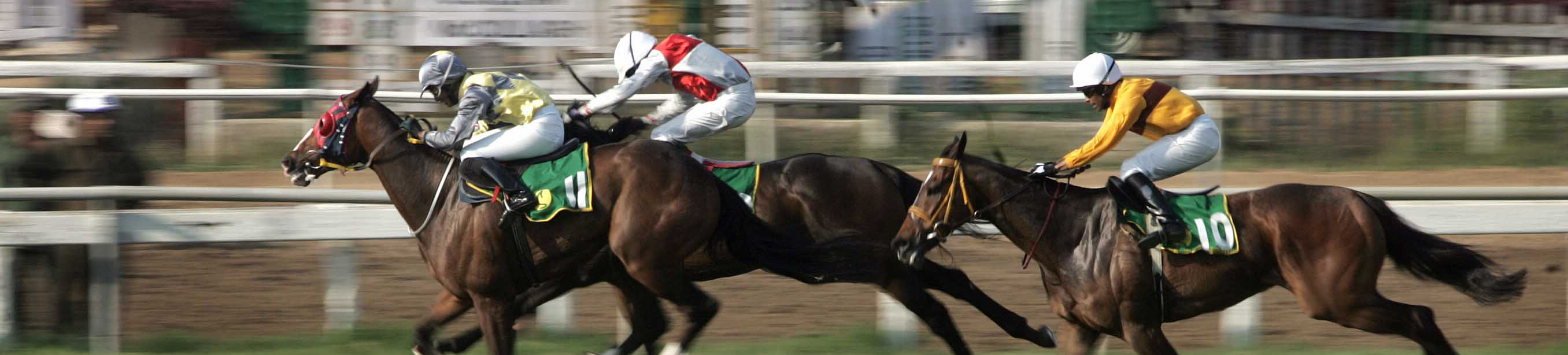 Bangalore turf club betting rules in limit bet it all sports betting online