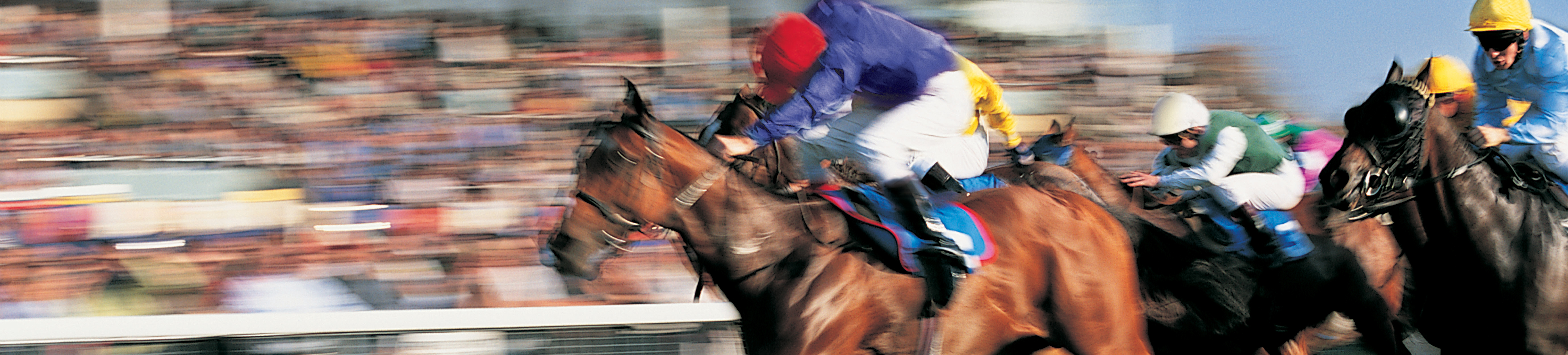 Pune race course betting odds irish 2000 guineas 2021 betting lines
